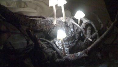 Садовый светильник своими руками «Грибы»