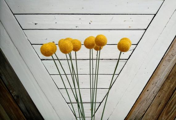Сферические цветы «Billy Buttons»