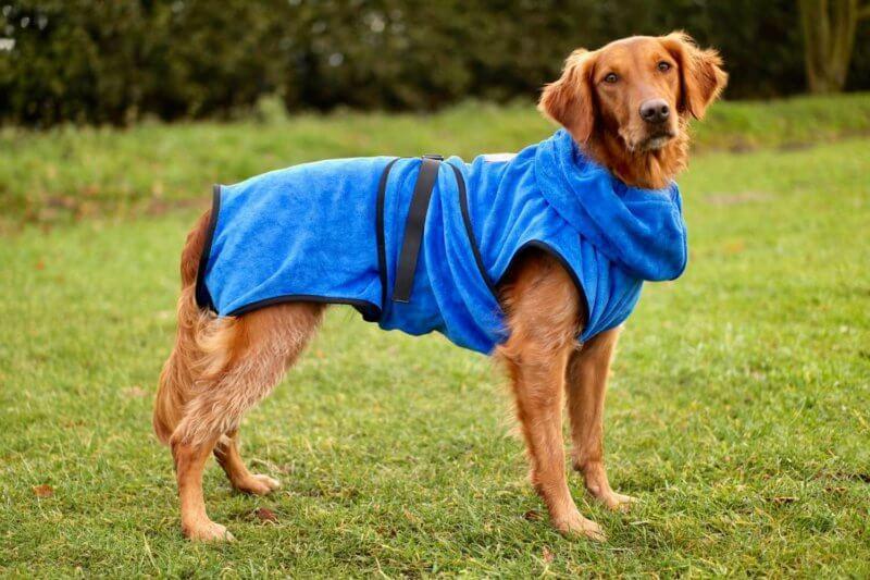 Как сшить комбинезон для собаки: мастер-класс по пошиву